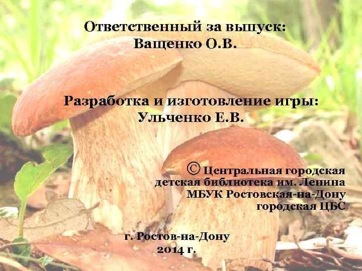 Ответственный за выпуск: Ващенко О. В. Разработка и изготовление игры: Ульченко Е. В. Центральная