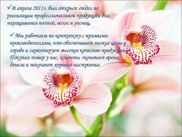 üВ апреле 2011 г. был открыт отдел по реализации профессиональной продукции для наращивания ногтей,