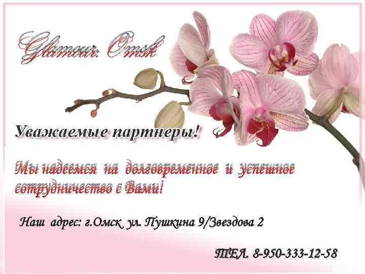 Glamour. Omsk Мы надеемся на долговременное и успешное сотрудничество с Вами! Наш адрес: г.