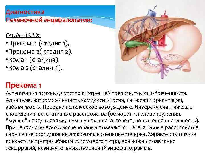 Анафилактический шок. Клинические рекомендации.