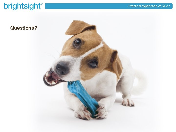 Practical experience of CC 3. 1 Questions? brightsight® your partner in security approval page