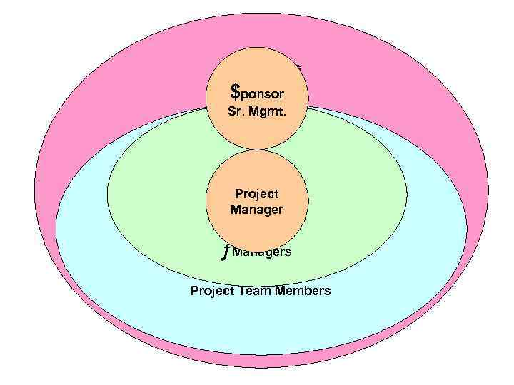 Stakeholders $ponsor Sr. Mgmt. Project Manager ¦Managers Project Team Members