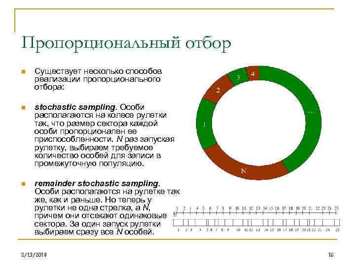 Пропорциональный отбор n Существует несколько способов реализации пропорционального отбора: n stochastic sampling. Особи располагаются