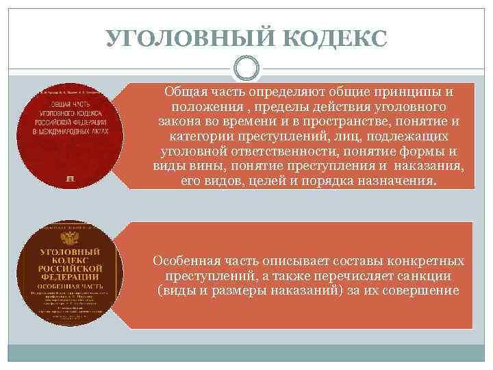 УГОЛОВНЫЙ КОДЕКС Общая часть определяют общие принципы и положения , пределы действия уголовного закона