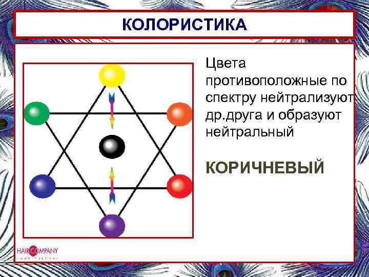 КОЛОРИСТИКА Цвета противоположные по спектру нейтрализуют др. друга и образуют нейтральный КОРИЧНЕВЫЙ