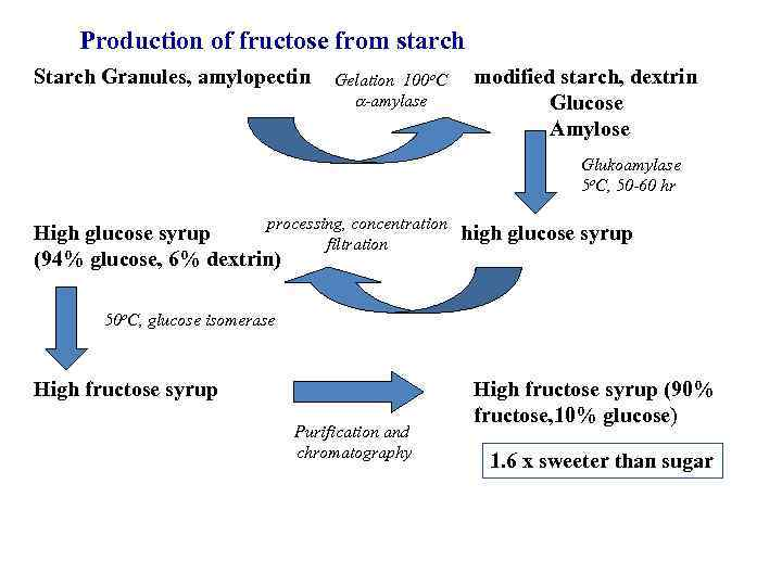 Production of fructose from starch Starch Granules, amylopectin Gelation 100 o. C -amylase modified