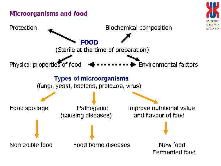 Microorganisms and food Protection Biochemical composition FOOD (Sterile at the time of preparation) Physical