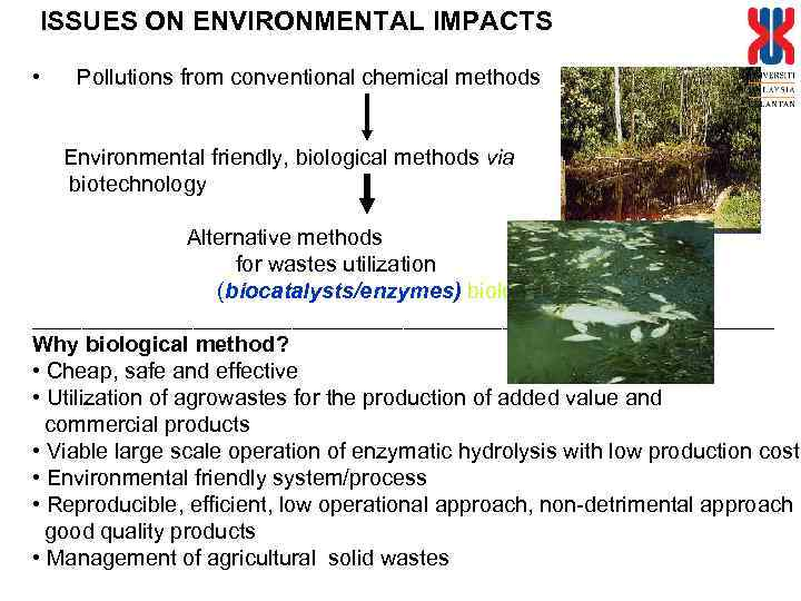 ISSUES ON ENVIRONMENTAL IMPACTS • Pollutions from conventional chemical methods Environmental friendly, biological methods