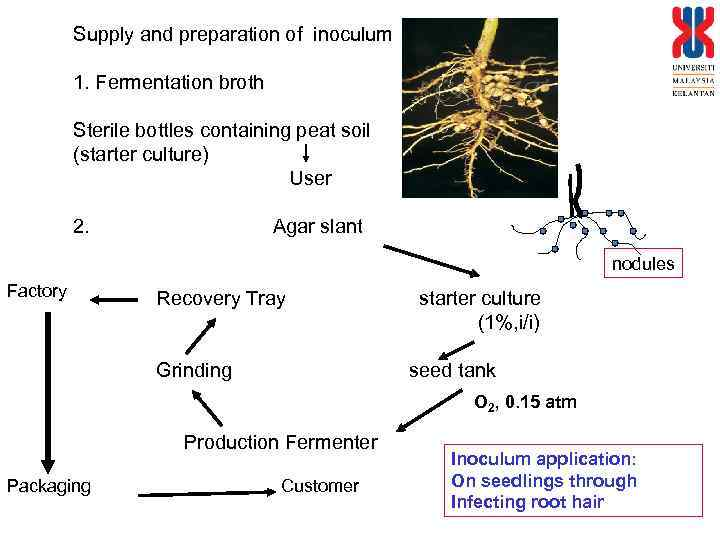 Supply and preparation of inoculum 1. Fermentation broth Sterile bottles containing peat soil (starter