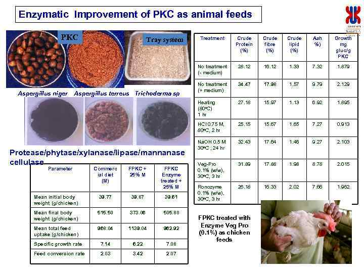 Enzymatic Improvement of PKC as animal feeds PKC Protease/phytase/xylanase/lipase/mannanase cellulase Parameter Commerc ial diet