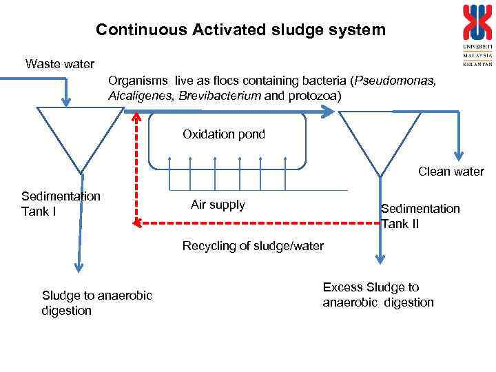 Continuous Activated sludge system Waste water Organisms live as flocs containing bacteria (Pseudomonas, Alcaligenes,