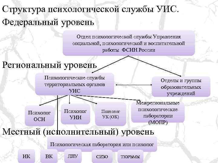 Структура психологической службы УИС. Федеральный уровень Отдел психологической службы Управления социальной, психологической и воспитательной