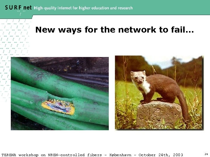 New ways for the network to fail… TERENA workshop on NREN-controlled fibers – København
