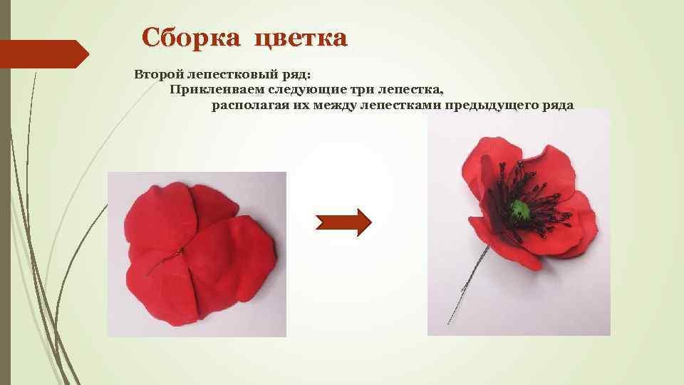 Сборка цветка Второй лепестковый ряд: Приклеиваем следующие три лепестка, располагая их между лепестками предыдущего