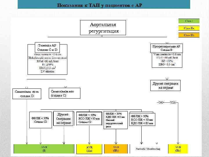 Показания к ТАП у пациентов с АР Аортальная регургитация Тяжелая АР Стадии C и