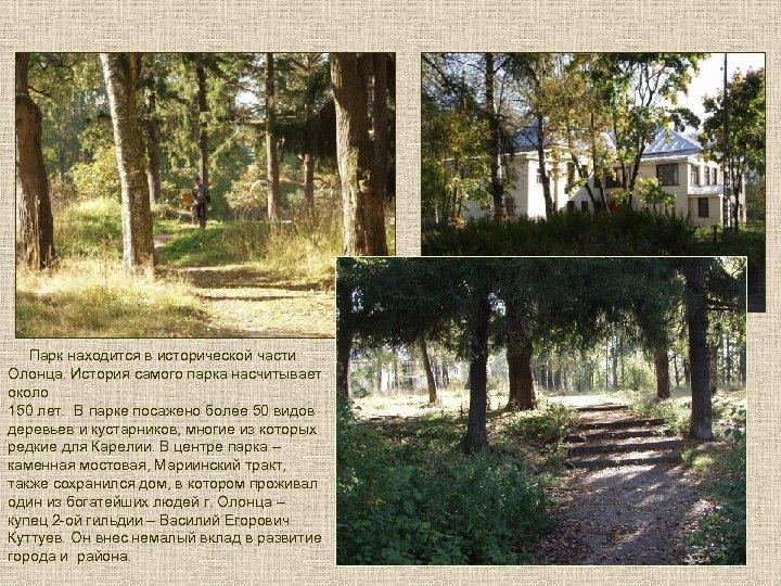 Парк находится в исторической части Олонца. История самого парка насчитывает около 150 лет.