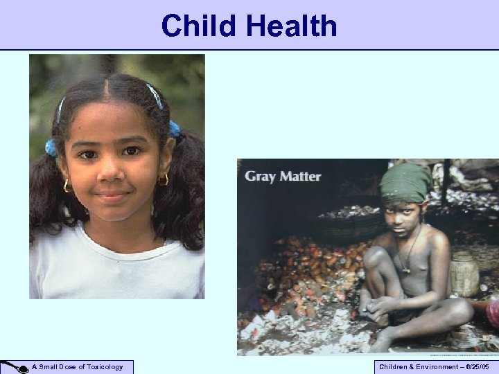 Child Health A Small Dose of Toxicology Children & Environment – 6/25/05