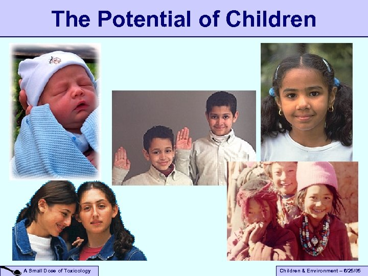 The Potential of Children A Small Dose of Toxicology Children & Environment – 6/25/05