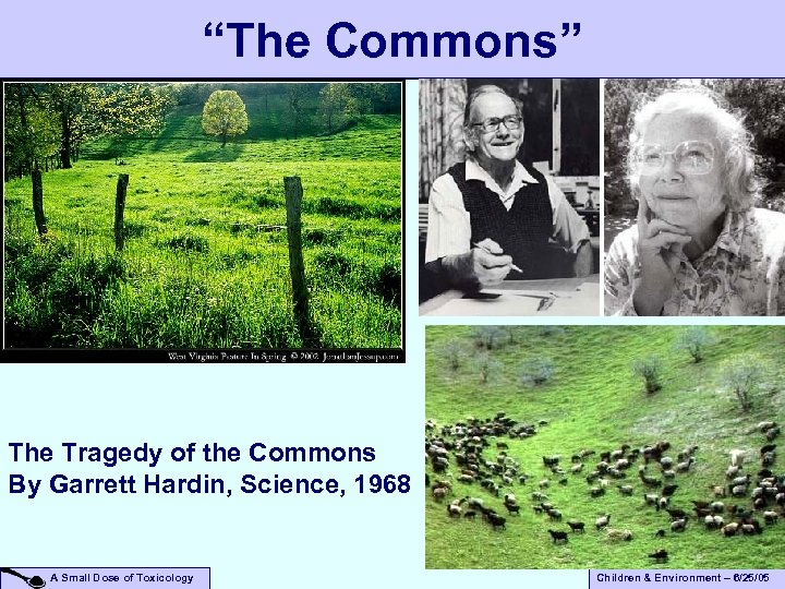 """""""The Commons"""" The Tragedy of the Commons By Garrett Hardin, Science, 1968 A Small"""