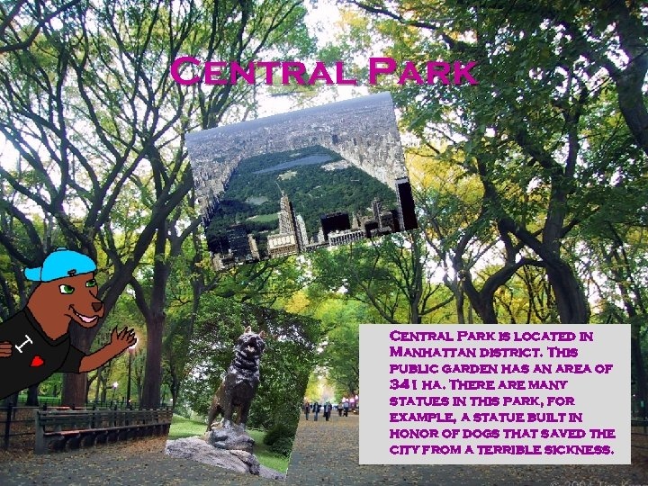 Central Park is located in Manhattan district. This public garden has an area of