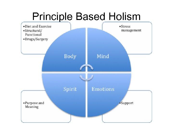 Principle Based Holism