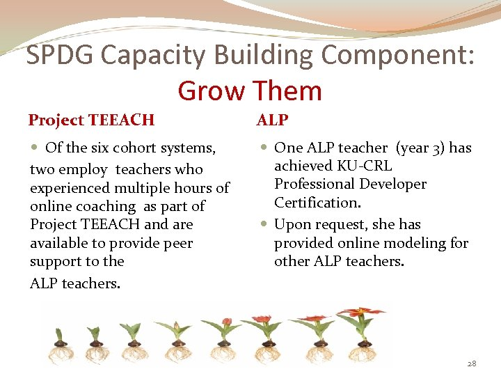 SPDG Capacity Building Component: Grow Them Project TEEACH ALP Of the six cohort systems,