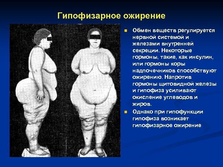 Гипофизарное ожирение n n Обмен веществ регулируется нервной системой и железами внутренней секреции. Некоторые