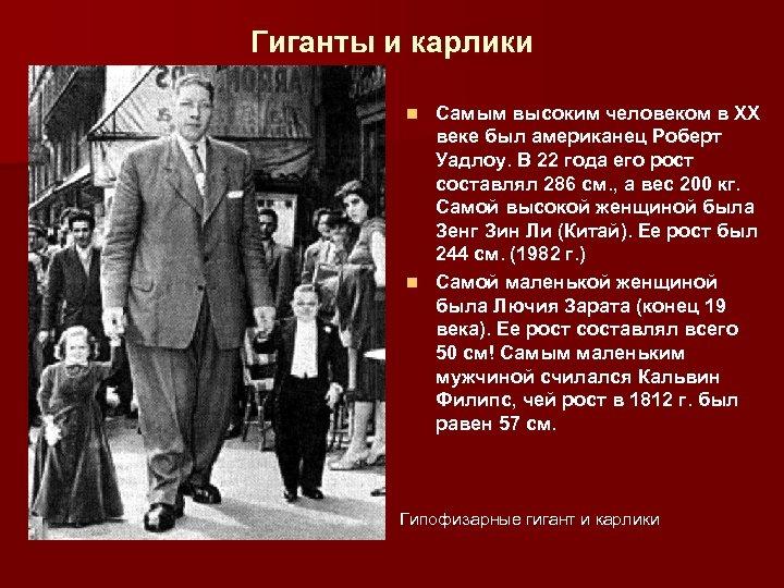 Гиганты и карлики Самым высоким человеком в ХХ веке был американец Роберт Уадлоу. В