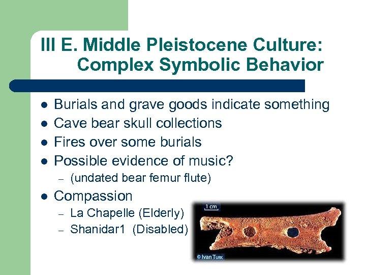 III E. Middle Pleistocene Culture: Complex Symbolic Behavior l l Burials and grave goods