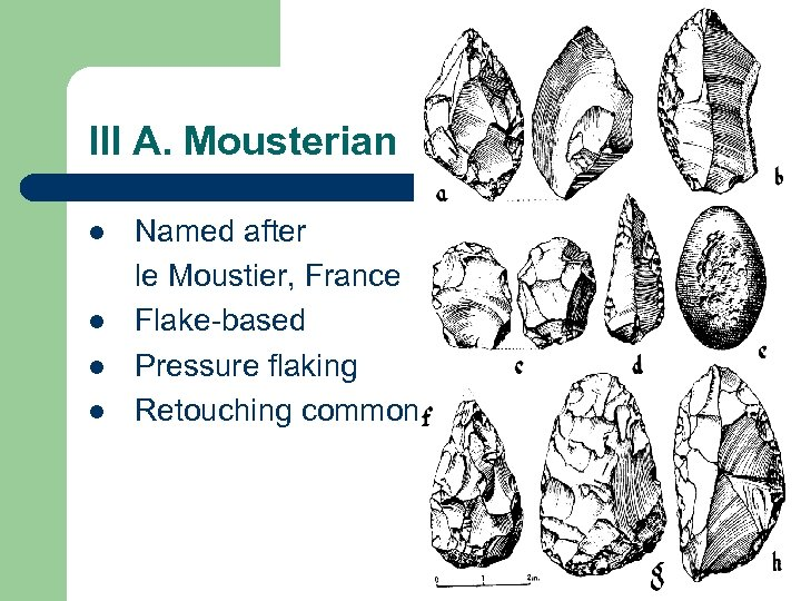 III A. Mousterian l l Named after le Moustier, France Flake-based Pressure flaking Retouching