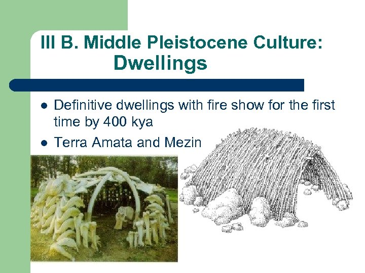 III B. Middle Pleistocene Culture: Dwellings l l Definitive dwellings with fire show for