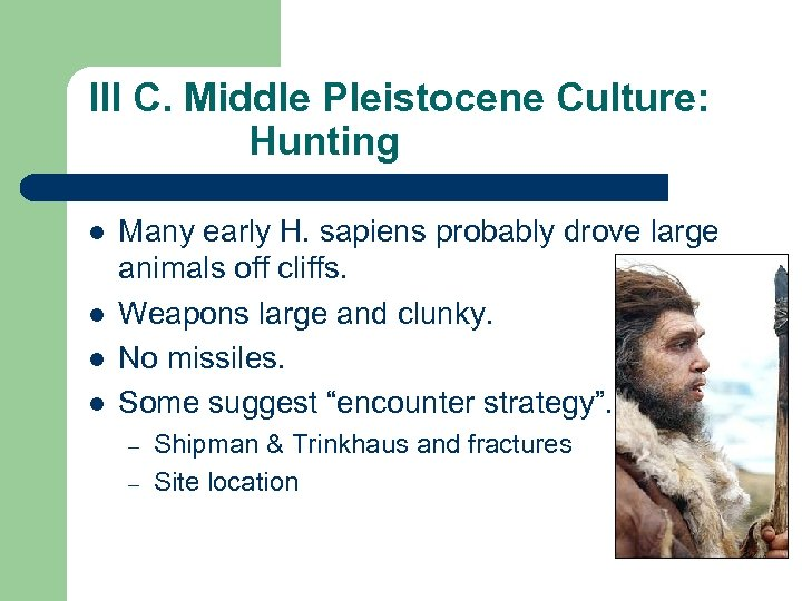 III C. Middle Pleistocene Culture: Hunting l l Many early H. sapiens probably drove