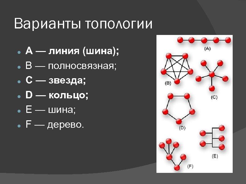 Варианты топологии A — линия (шина); B — полносвязная; C — звезда; D —