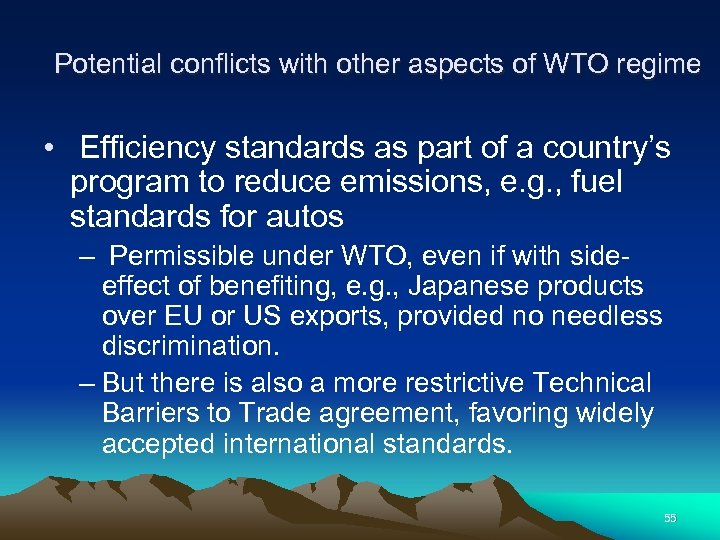 Potential conflicts with other aspects of WTO regime • Efficiency standards as part of