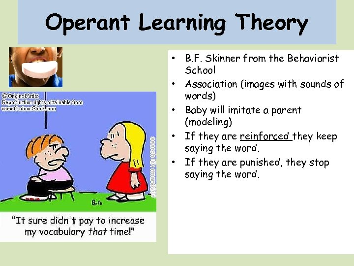 Operant Learning Theory • B. F. Skinner from the Behaviorist School • Association (images