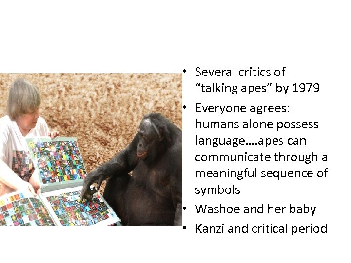 "• Several critics of ""talking apes"" by 1979 • Everyone agrees: humans alone"