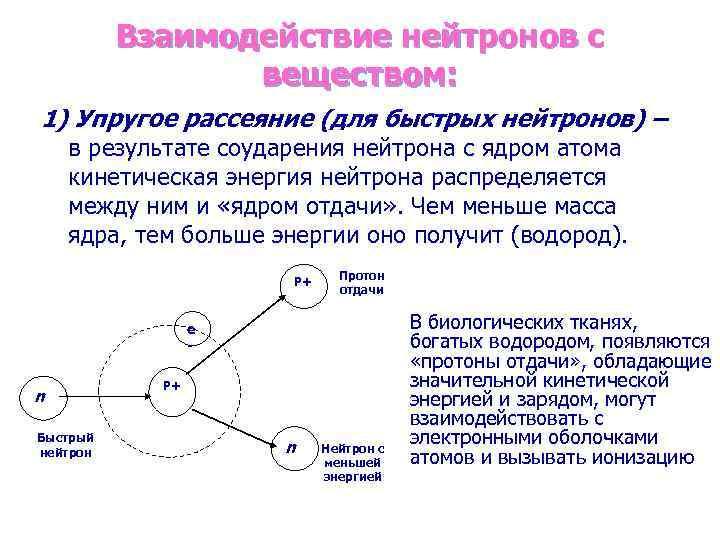 Взаимодействие нейтронов с веществом: 1) Упругое рассеяние (для быстрых нейтронов) – в результате соударения