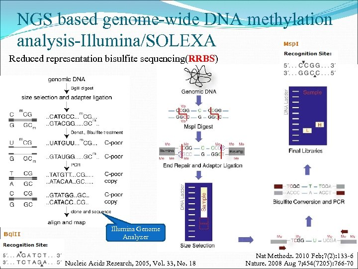 NGS based genome-wide DNA methylation analysis-Illumina/SOLEXA Reduced representation bisulfite sequencing(RRBS) Illumina Genome Analyzer Nucleic
