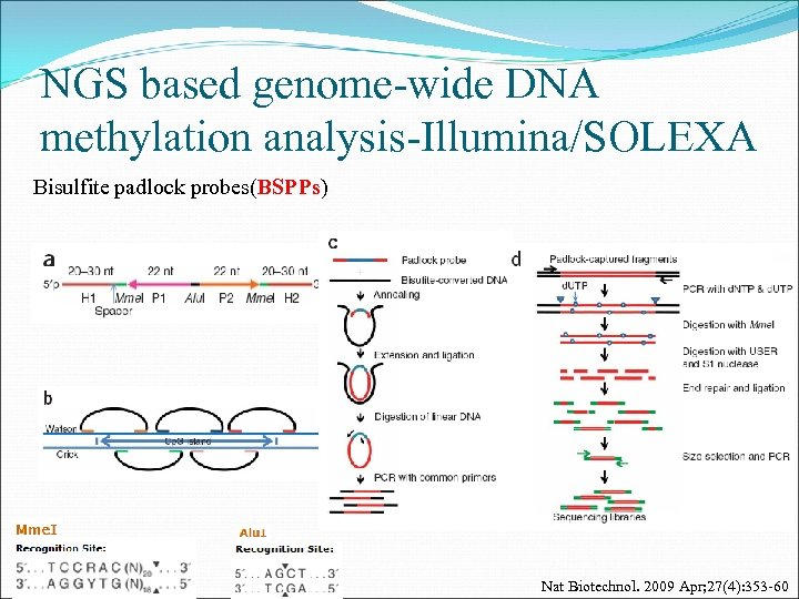 NGS based genome-wide DNA methylation analysis-Illumina/SOLEXA Bisulfite padlock probes(BSPPs) Nat Biotechnol. 2009 Apr; 27(4):