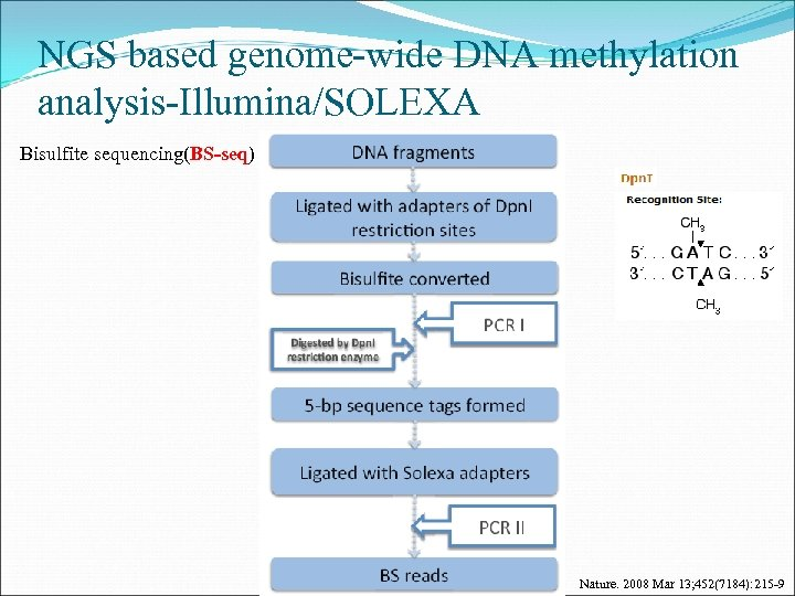 NGS based genome-wide DNA methylation analysis-Illumina/SOLEXA Bisulfite sequencing(BS-seq) Nature. 2008 Mar 13; 452(7184): 215