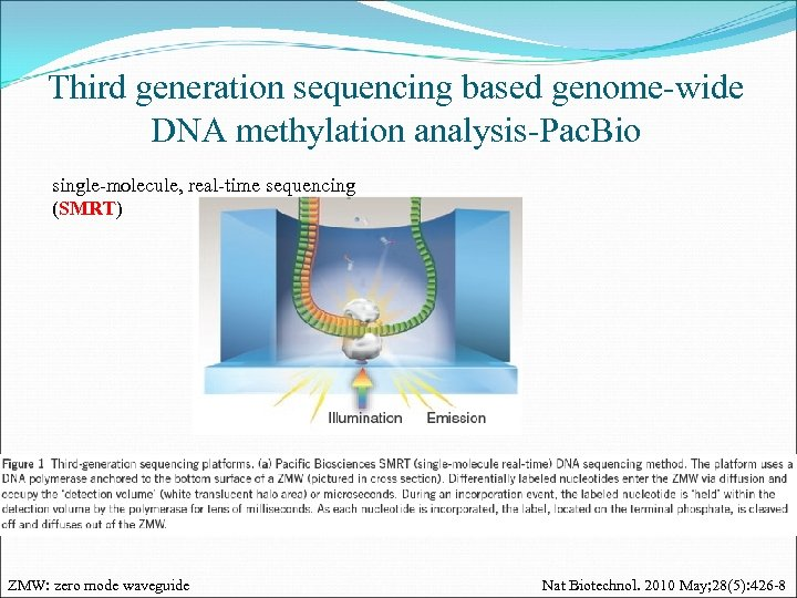 Third generation sequencing based genome-wide DNA methylation analysis-Pac. Bio single-molecule, real-time sequencing (SMRT) ZMW: