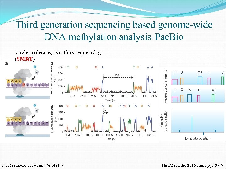 Third generation sequencing based genome-wide DNA methylation analysis-Pac. Bio single-molecule, real-time sequencing (SMRT) Nat