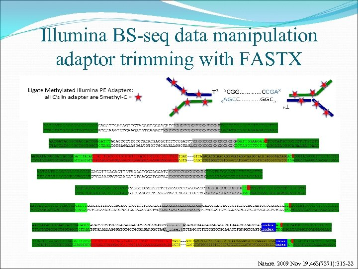 Illumina BS-seq data manipulation adaptor trimming with FASTX Nature. 2009 Nov 19; 462(7271): 315