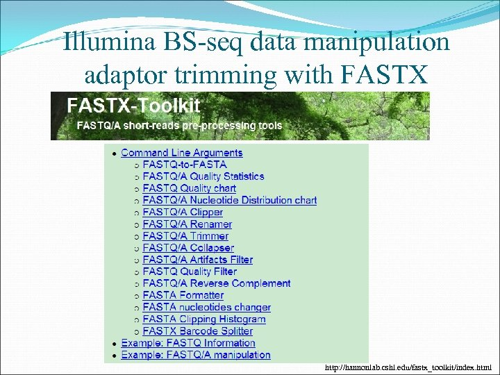 Illumina BS-seq data manipulation adaptor trimming with FASTX http: //hannonlab. cshl. edu/fastx_toolkit/index. html