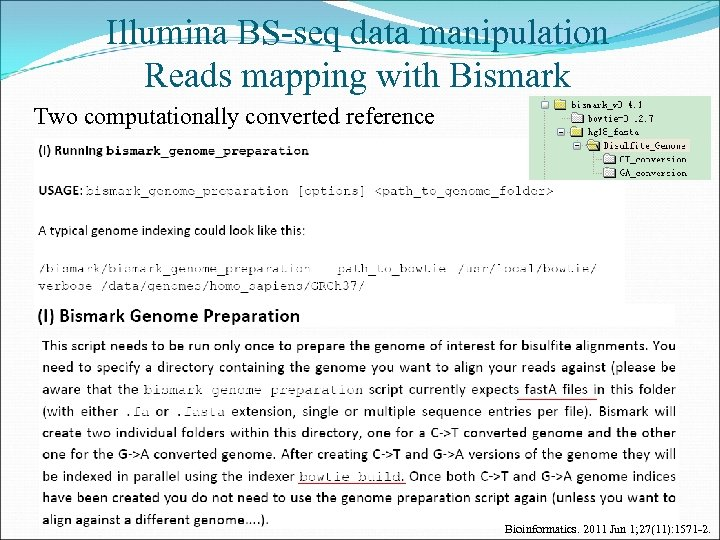 Illumina BS-seq data manipulation Reads mapping with Bismark Two computationally converted reference Bioinformatics. 2011