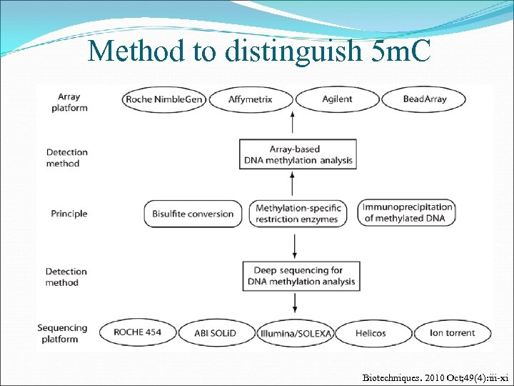 Method to distinguish 5 m. C Biotechniques. 2010 Oct; 49(4): iii-xi