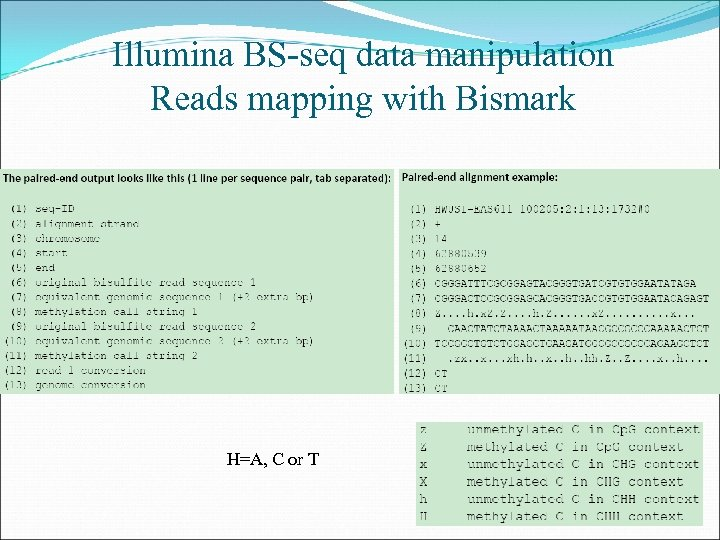 Illumina BS-seq data manipulation Reads mapping with Bismark H=A, C or T