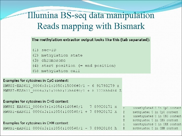 Illumina BS-seq data manipulation Reads mapping with Bismark