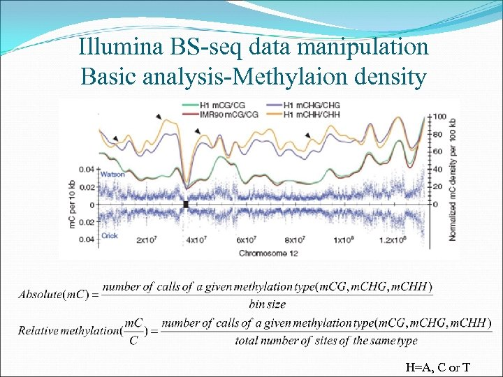 Illumina BS-seq data manipulation Basic analysis-Methylaion density H=A, C or T