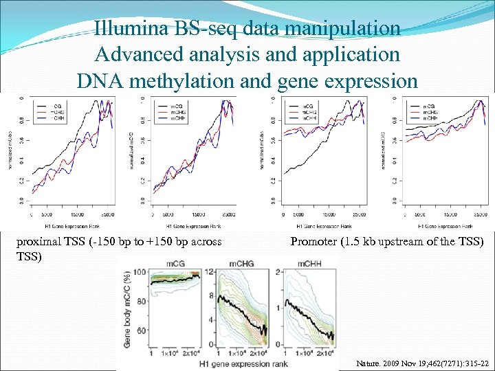 Illumina BS-seq data manipulation Advanced analysis and application DNA methylation and gene expression proximal